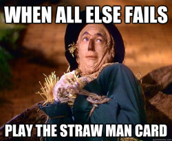 Image result for straw man argument