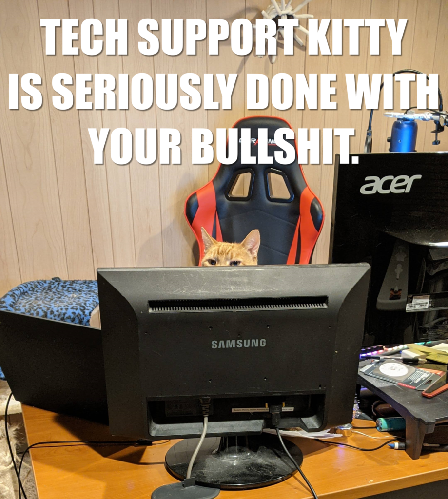 Tech Support Kitty is seriously done with your bullshit.